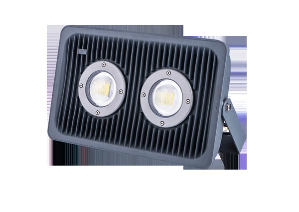 Flood Light Series-YYF-06-100W