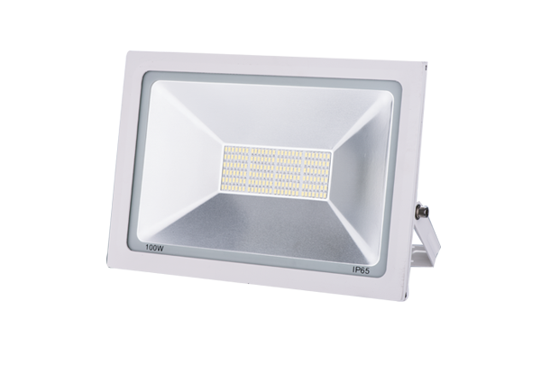 Flood Light Series-YYF-10-100W