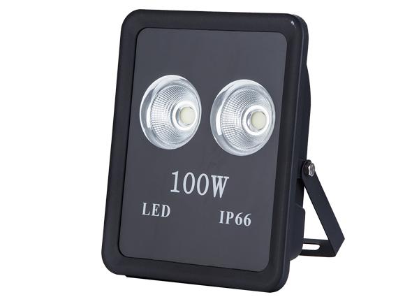 Flood Light Series-YYF-14-100W
